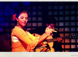 Dance With Me India - School - Shehzeen Cassum Flamenco Academy & Dance Company