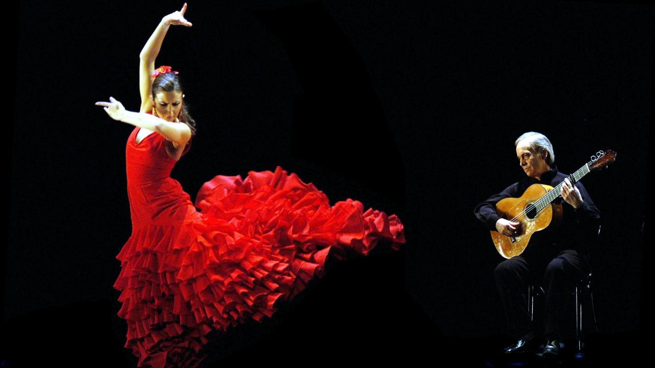 Dance With Me India - Flamenco